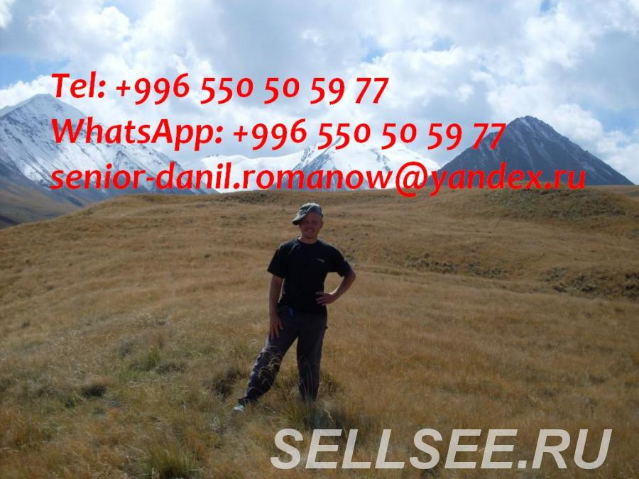 guide, driver in Kyrgyzstan, tourism, travel, excursions, . .. .